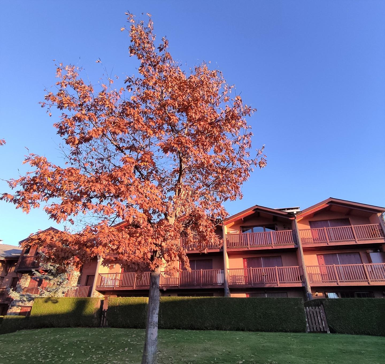 Casa adosada -                                       Angoustrine-villeneuve-des-escaldes -                                       3 dormitorios -                                       6 ocupantes